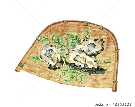 かき 牡蠣 43253122