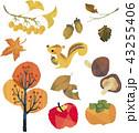 秋の風物詩いろいろ 43255406