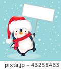 ぺんぎん ペンギン クリスマスのイラスト 43258463