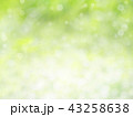Green bokeh abstract background 43258638