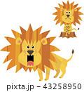 ライオン 獅子 百獣の王のイラスト 43258950