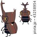 カブト虫の兄弟 43258954