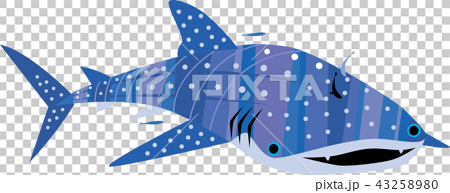 Cute little whale shark 43258980