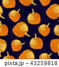 Vector seamless pattern with pumpkin crop on dark background 43259818