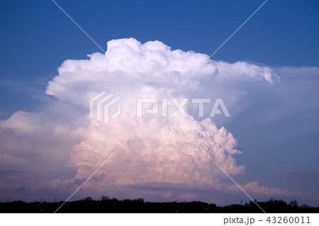 宇都宮市 かなとこ雲(積乱雲) 43260011
