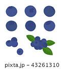 ブルーベリー 素材セット 43261310
