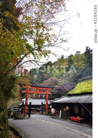 愛宕神社 一の鳥居 43264283