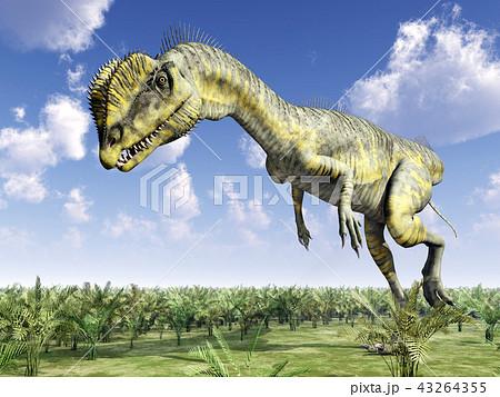 Dinosaur Dilophosaurus 43264355