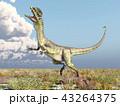 恐竜 爬虫類 動物のイラスト 43264375