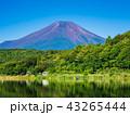 富士山 世界遺産 山中湖の写真 43265444