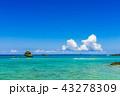 海 沖縄 青空の写真 43278309