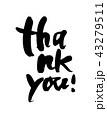 筆文字 メッセージ サンキューのイラスト 43279511
