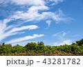 青空 雲 空の写真 43281782