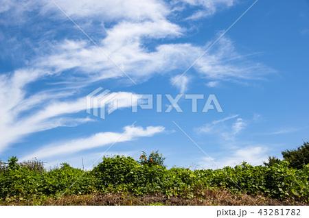 青空白雲 43281782