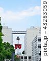 早稲田大学 43283059