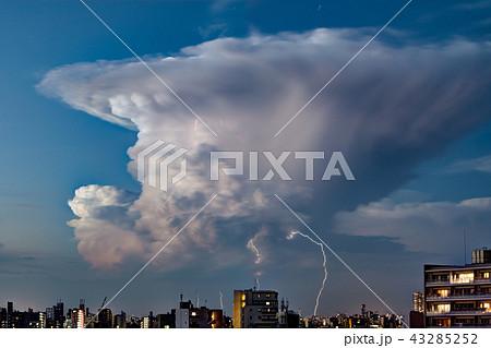 ゲリラ豪雨・東京・都心 43285252