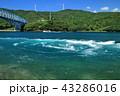 黒之瀬戸大橋 うず潮と船 43286016