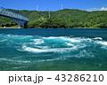 日本三大急潮の一つ! 黒之瀬戸の渦潮と黒之瀬戸大橋 43286210