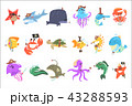 サカナ 魚 魚類のイラスト 43288593