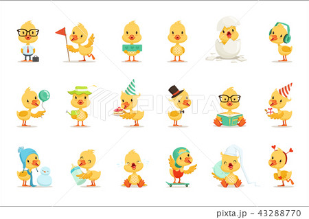 Little Yellow Duck Chick Different Emotions And Situations Set Of Cute Emoji Illustrations 43288770