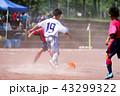少年サッカー サッカー フットボールの写真 43299322