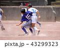少年サッカー サッカー フットボールの写真 43299323