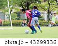 サッカー フットボール 男の子の写真 43299336