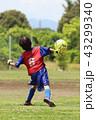 少年サッカー 43299340