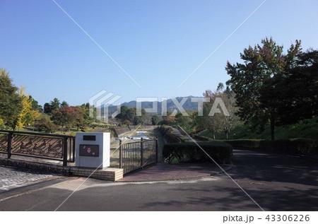 群馬県甘楽町の公園、田舎の風景 43306226