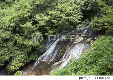 緑の森と布の滝 43306428