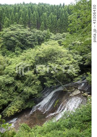緑の森と布の滝 43306430
