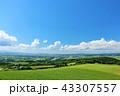 晴れ 北海道 丘の写真 43307557