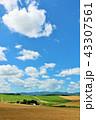 青空 晴れ 北海道の写真 43307561