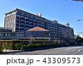 岡山県庁 秋 役所の写真 43309573