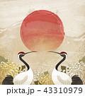 アジア人 アジアン アジア風のイラスト 43310979