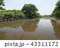 越辺川 43311172