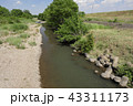 越辺川 43311173