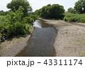 越辺川 43311174