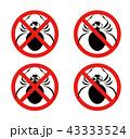 クモのイラスト 43333524