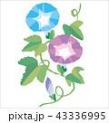 蕾 花 風物詩のイラスト 43336995