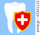 歯 シールド 楯のイラスト 43341110