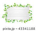 白木 看板 若葉のイラスト 43341188