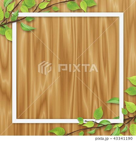 新緑 葉 白いフレーム オーク色 木目 43341190