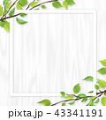 白木 フレーム 葉のイラスト 43341191