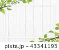 白木 フレーム 葉のイラスト 43341193