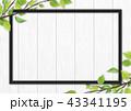 白木 フレーム 葉のイラスト 43341195