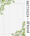 白木 フレーム 葉のイラスト 43341196