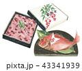 赤飯と祝い鯛 43341939