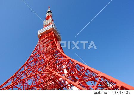 青空と東京タワー 43347287