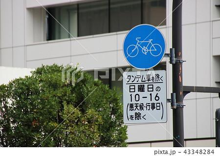 皇居前サイクリング道路(パレスサイクリングコース)の「自転車専用」の標識。(東京都千代田区内) 43348284